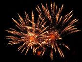 Fantastic Firework — Stock Photo