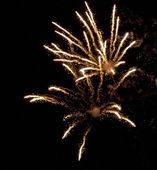 Fireworks in the night sky — Stock Photo