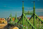 Most slavný svobody — Stock fotografie
