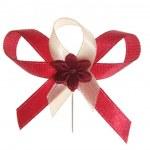 Celebration bow — Stock Photo #2323039