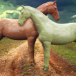 Stock Photo: Two horses