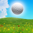 Golf ball in the air on a sunny day - Stock Photo