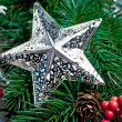 Silver star with branch of Christmas tree — Stock Photo