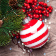 Christmas decoration — Stock Photo #16261181