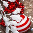 Christmas decoration — Stock Photo #16261209