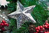 Estrela de prata, com ramo de árvore de natal — Fotografia Stock