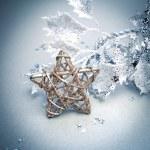 Яркая композиция Рождественская звезда — Стоковое фото