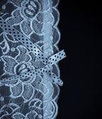 Beyaz dantel iç çamaşırı arka plan — Stok fotoğraf