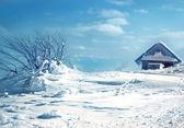 Staré dřevěné střechy pokryté sněhem a modrá obloha — Stock fotografie