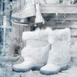 Vintage style picture with winter boots — Stock Photo #23571121