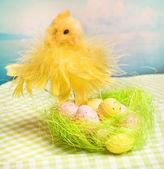 Pulcino di Pasqua e le uova nel nido — Foto Stock