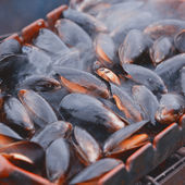 Mussel on the grill — Stock Photo