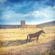 Medieval fortress and horse - toned picture in retro style — Stock Photo