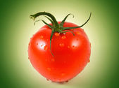 Red tomato on green background — Stock Photo