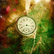 Pocket watch on a christmas tree  — Stock Photo