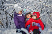 Family Having Fun in Snowy Woodland — Stock Photo