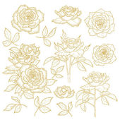 Set of one-colored outlined roses — Stock Vector