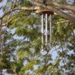 Royalty-Free Stock Photo: Giant Zen wind chimes on tree near the a Visitor\'s Center in Auroville