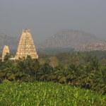 Virupaksha Temple among mountains and palm plantations on sunrise — Stock Photo #23390782