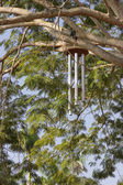 Giant Zen wind chimes on tree near the a Visitor's Center in Auroville — Stock Photo