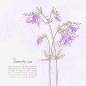 Romantic background with violet aquilegia — Stock Vector