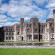 Medieval Ashford castle and gardens - Stock Photo