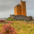 Kilcoe castle in Ireland - Stock Photo