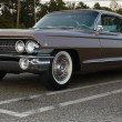 1961 Cadillac - Stock Photo