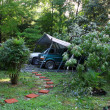 Hurricane Irene damage — Foto de Stock