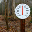 Stock Photo: Outdoor spring thermometer