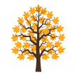 Tree maple with orange leafage — Imagen vectorial