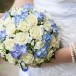 Bride with bouquet, closeup — Stock Photo #17010225