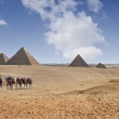 Pyramids of Giza — Stock Photo #18505113