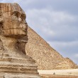 The Sphinx - guardian of the pharaos — Stock Photo