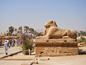 Entrance sculpture by the temple of Karnak — Stock Photo