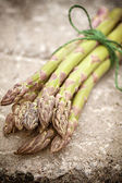 Asparagus bundle — Stock Photo
