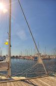 Estate alla marina — Foto Stock