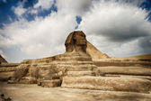 The Sphinx in Egypt — Stock Photo