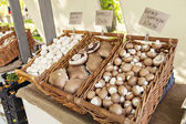 农民市场蘑菇 — 图库照片
