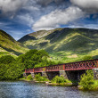 Stock Photo: Loch Awe railway bridge.