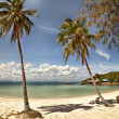 Sunny tropical beach — Stock Photo