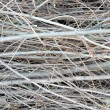 Royalty-Free Stock Photo: Dead Branches