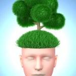 Think green — Stock Photo