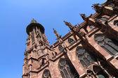 The Freiburg Muenster — Stock Photo