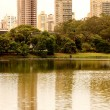 Reflections in the Ibirapuera Park in Sao Paulo - Stock Photo