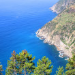 View on the coast of Cinque Terre - Stockfoto