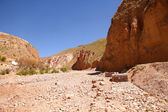 Landscape in Jujuy — Stock Photo