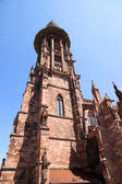 The Freiburg Muenster — Stock Photo