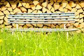 Bench in a Garden — Stock Photo