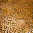 Cobblestone pavement in Verona — Stock Photo